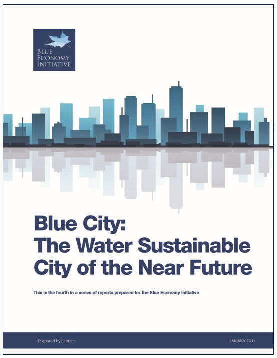 Blue City Report_cover with border