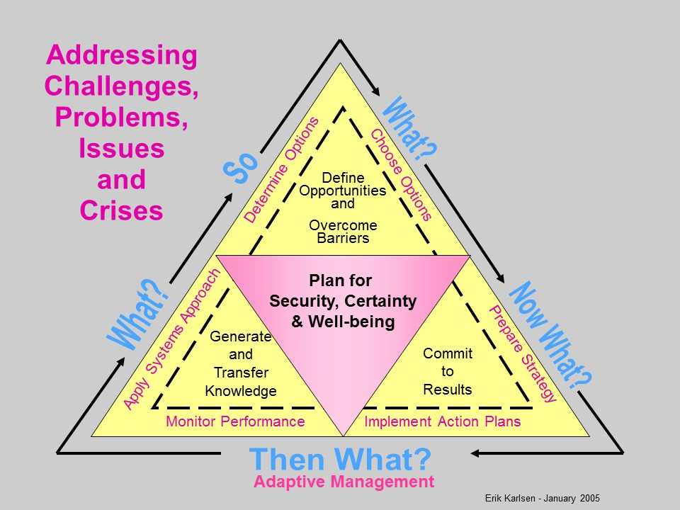 The triangle above summarizes a set of nested processes that address needs for change, and provides a mind map to illustrate how 'we will get there'. At each corner a commitment must be made to proceed to the next step. These are turning points.