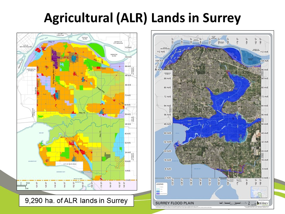 carrie-baron-ag-lands-in-surrey