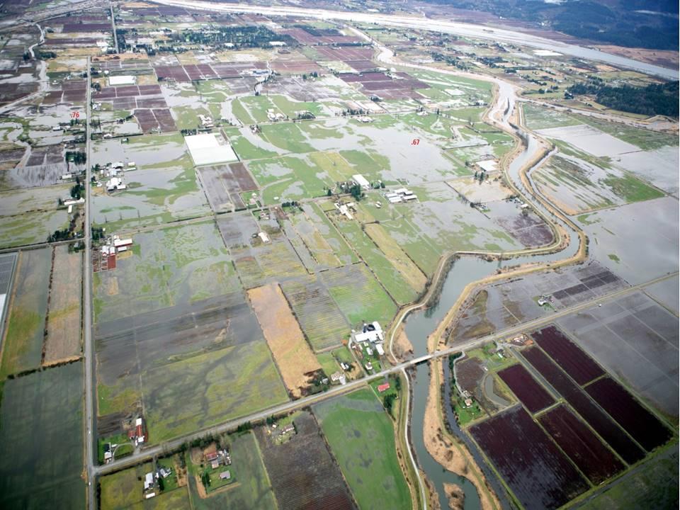 pitt-meadows-aerial