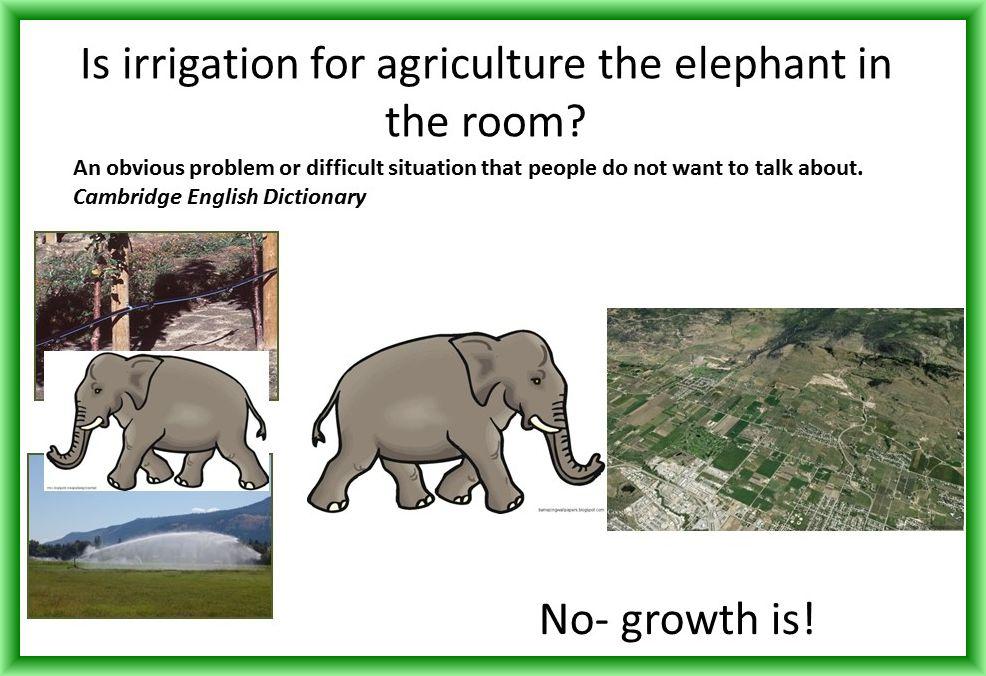 denise-neilsen_elephant-in-room