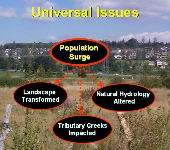 Universal Issues_2005