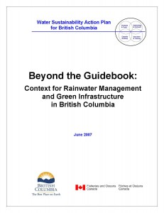 Beyond the Guidebook-2007_Title Page with border