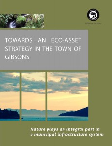 D09_Gibsons_Eco-Asset-Strategy_cover
