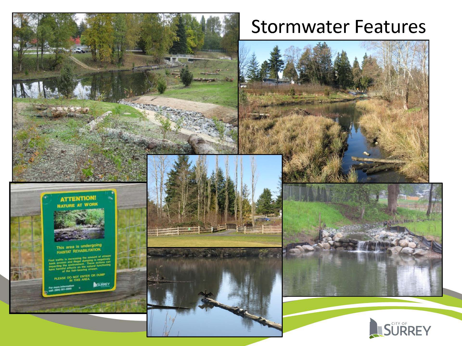 Local governments often mimic nature (design with nature) to secure infrastructure services. The City of Surrey continues to rehabilitate wetlands for water retention and stream protection as well as adding amenity value to local parks and real estate. (Image Credit: Carrie Baron, City of Surrey)