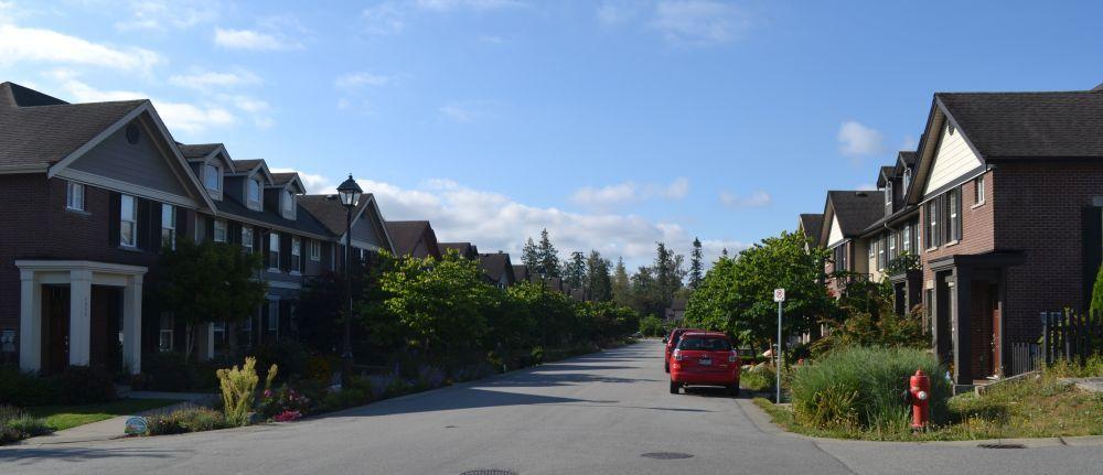 Rain Gardens in Langley Township, British Columbia