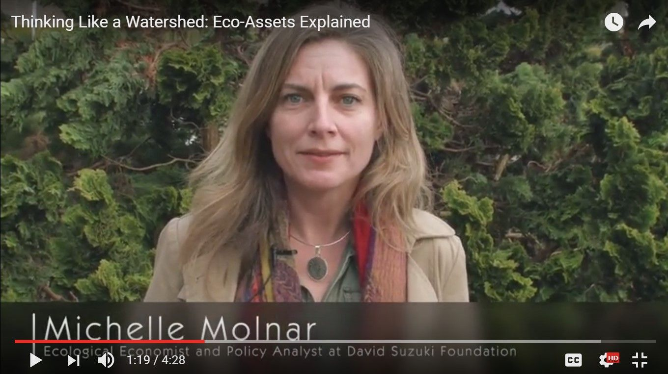 Michele Molnar_Mar-2017_Comox Valley video