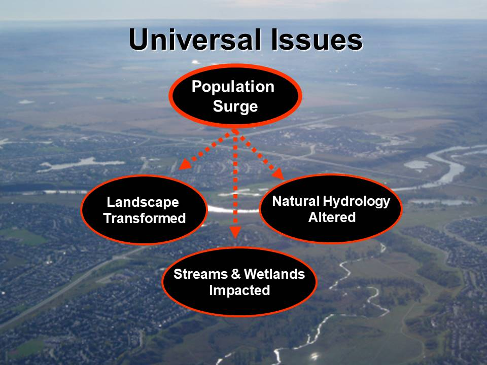 CochraneConf_Oct2006_universal issues