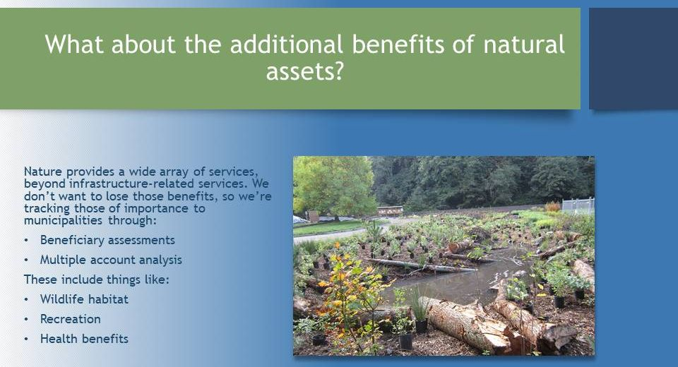 Molnar_Valuing-Ecological-Assets_March2017_benefits