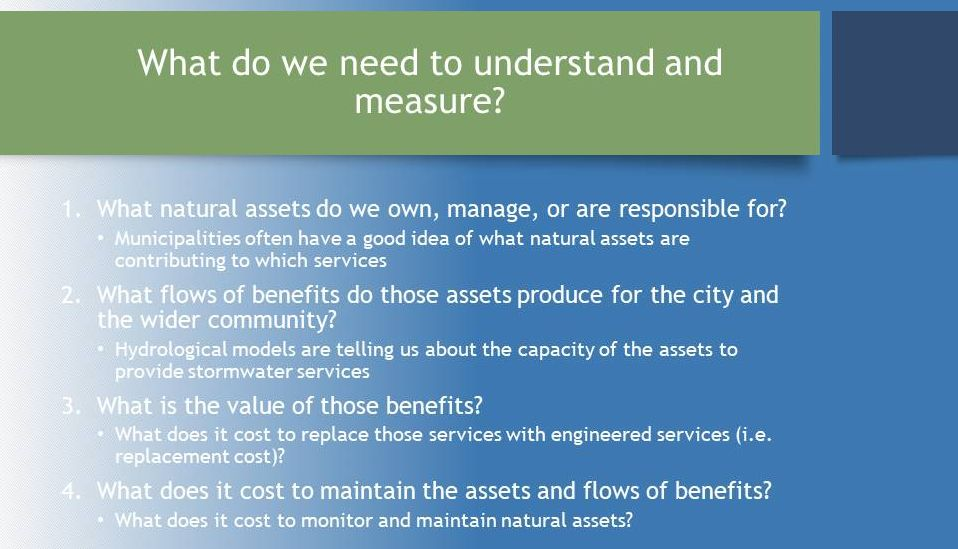 Molnar_Valuing-Ecological-Assets_March2017_measure what