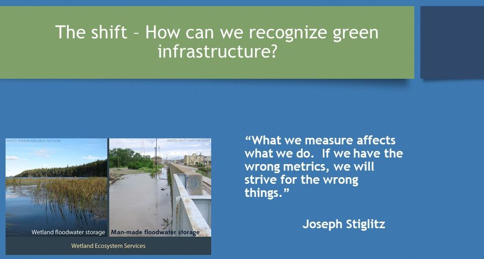 Stephens-et-al_Valuing-Ecological-Assets_March2017_metrics