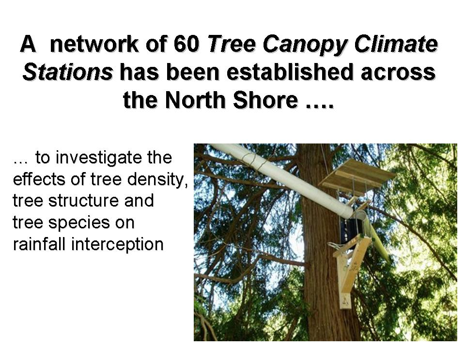 2007 WBM Forum_tree canopy_Slide1