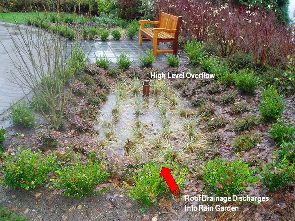 """Undertaken by Don Moore, the rain garden constructed at the Wesbild offices in Coquitlam was the first """"engineered"""" rain garden in BC to be implemented in accordance with design guidelines developed by a Metro Vancouver inter-governmental working group"""