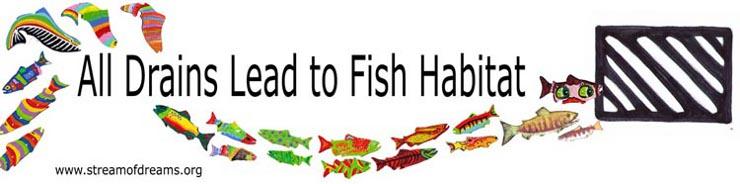 All Drains Lead to Fish Habitat