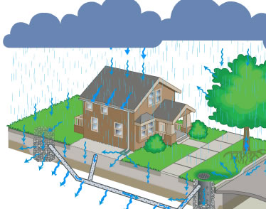 "In 2009, the City of Surrey developed an online ""rain and drain simulator"" so that students could explore the impacts to nearby creeks and streams when water hits a built environment."