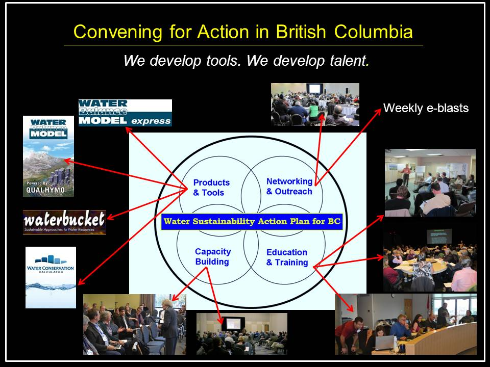 8_Surrey_Champion-Supporter-history_Convening-for-Action snapshot