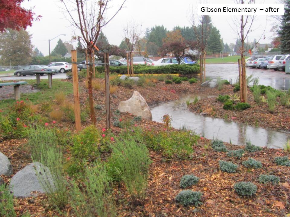 Delta_Gibsons Elemenary_rain garden_after