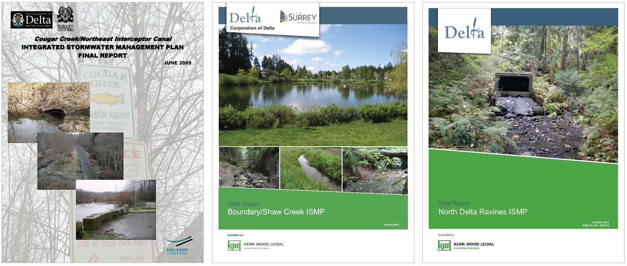 Delta_ISMP-covers_Jan2015