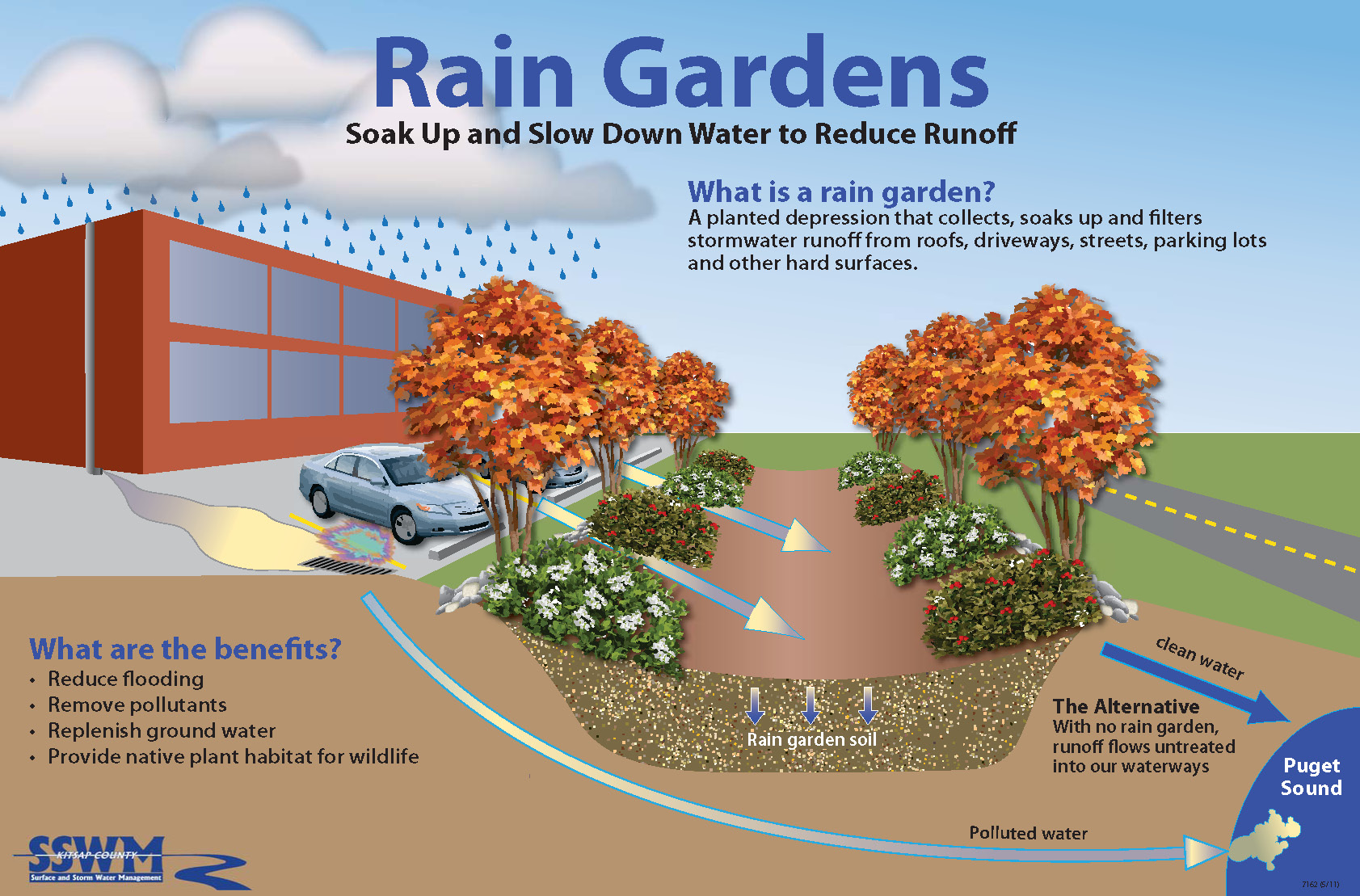 The key to the whole systems approach is understanding for Rain garden design
