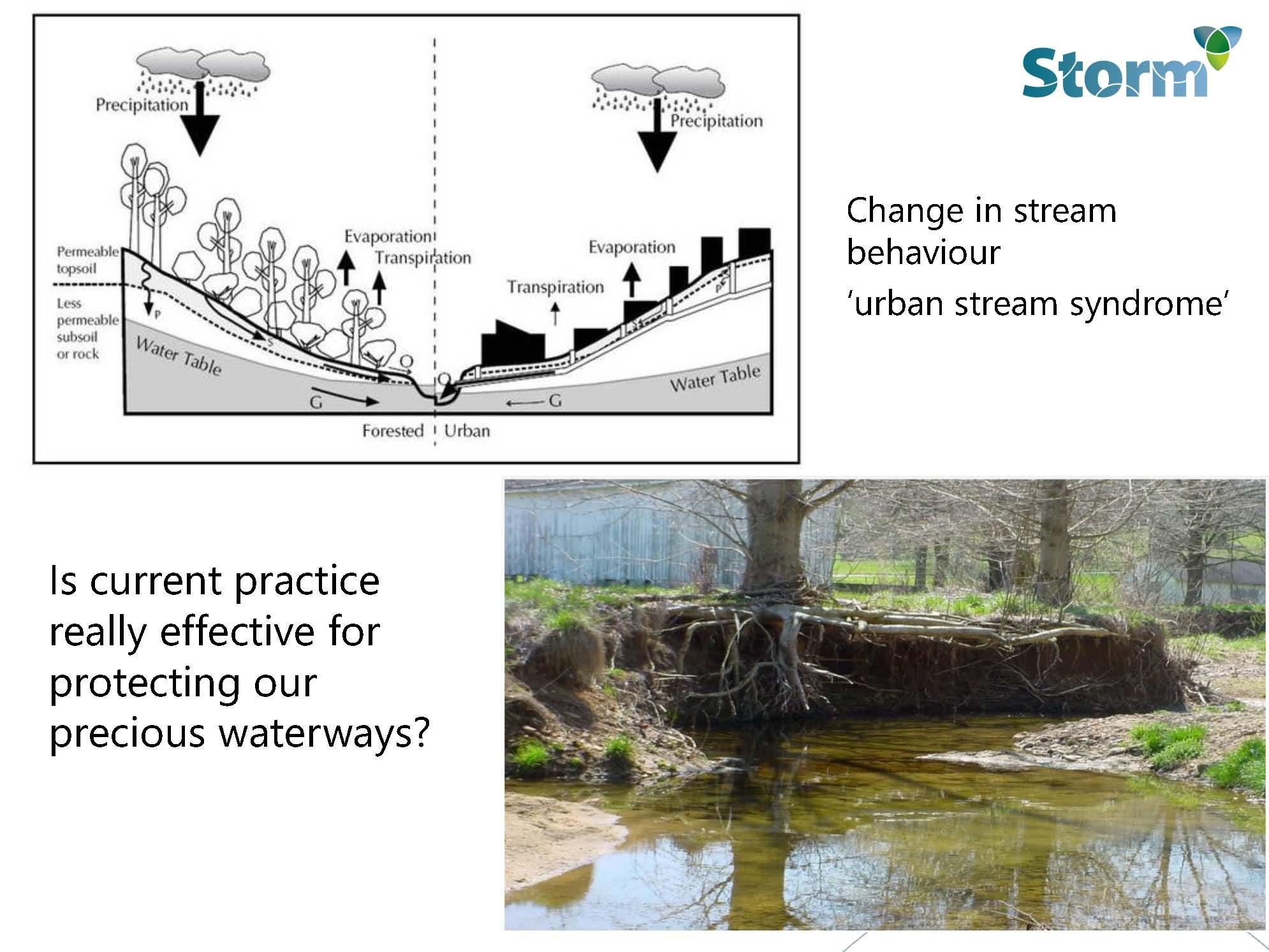rod-wiese_change-in-stream-behaviour