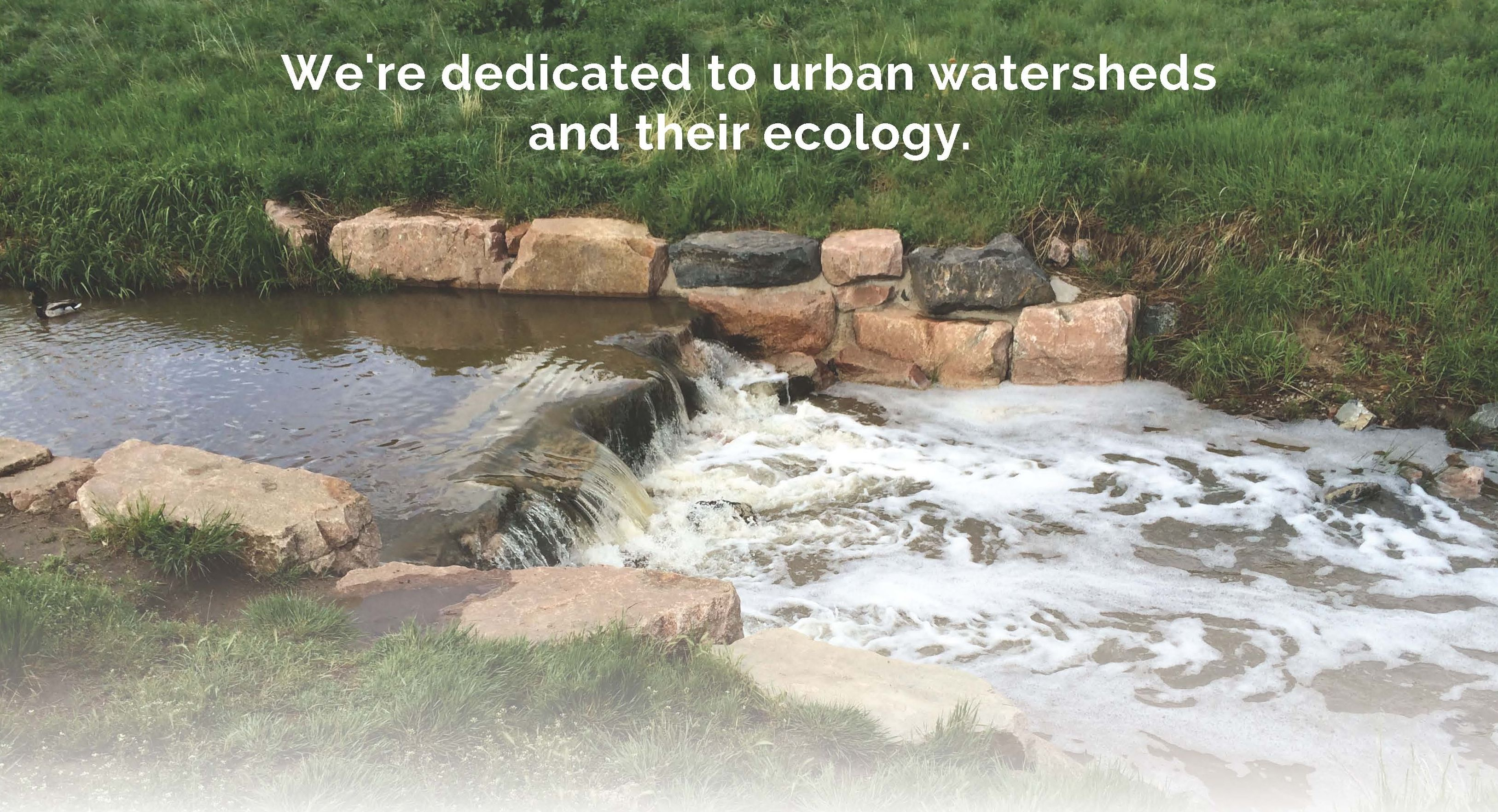 Image Credit: Urban Watersheds Research Institute