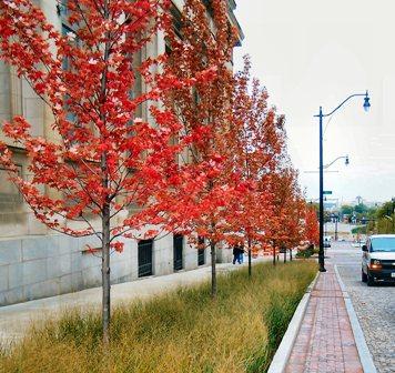 Columbus_Town Street