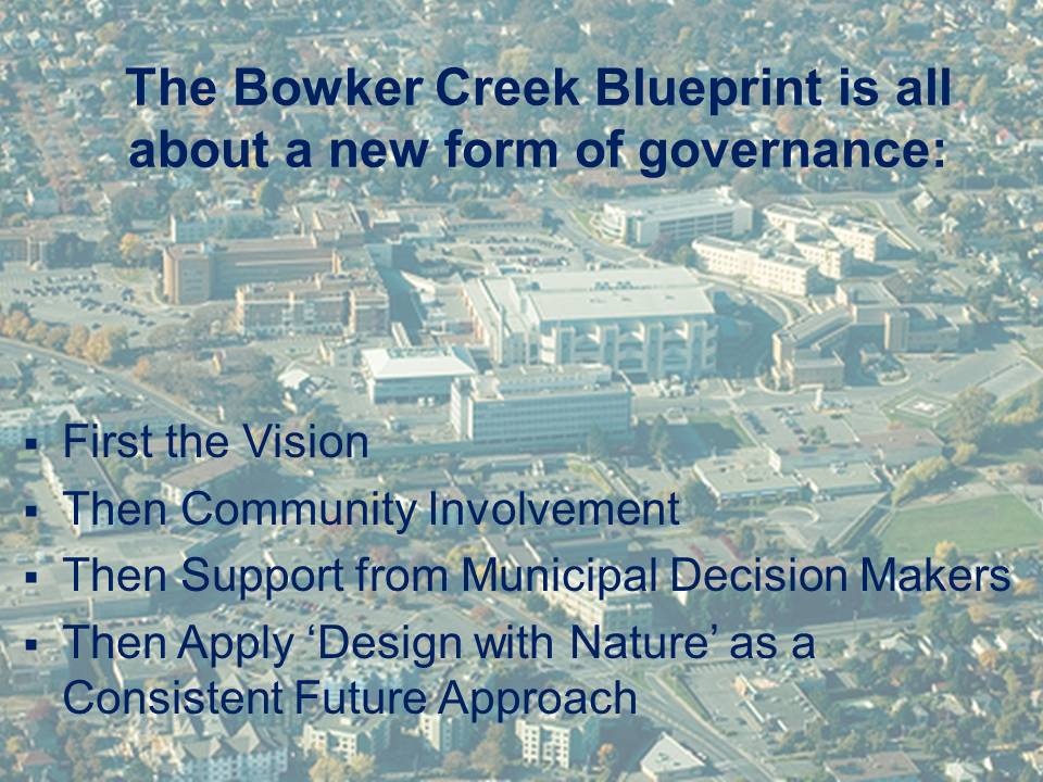 New-Form-Governance_Bowker-Blueprint