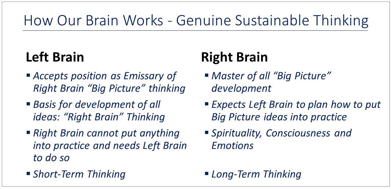 Learn brain physiology