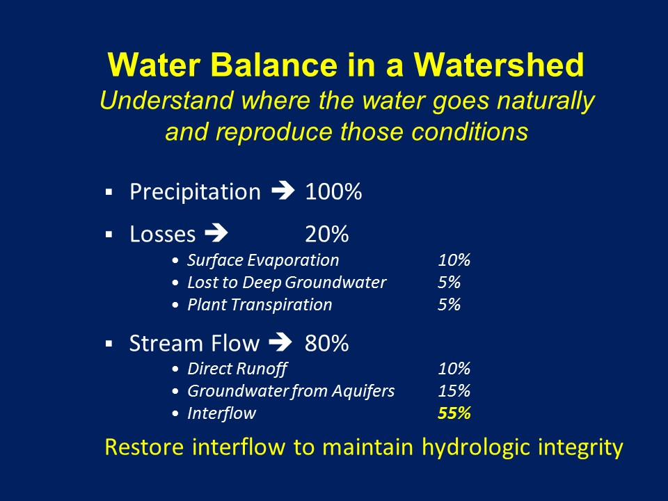 Water Balance in a Watershed
