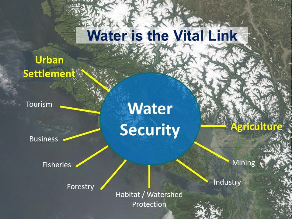 water is the vital link