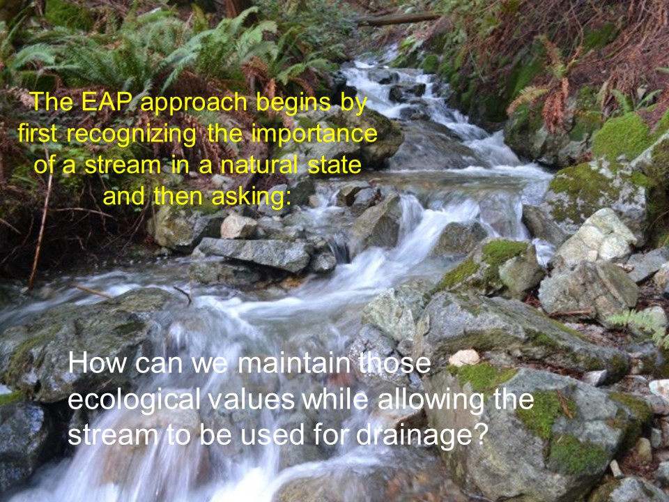 Stephens et al_Valuing-Ecological-Assets_March2017_EAP