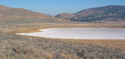 White Lake, west of Okanagan Falls, completely evaporates in summer, leaving behind a dry lake floor of white mineral salts. (R.J.W. Turner, GSC 2006-150)