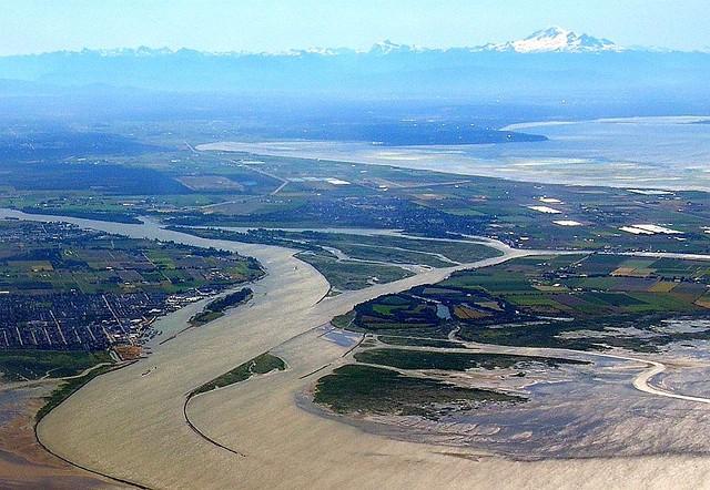 View of Steveston, Ladner, Canoe Pass, and Mt. Baker (Rees, 2007)