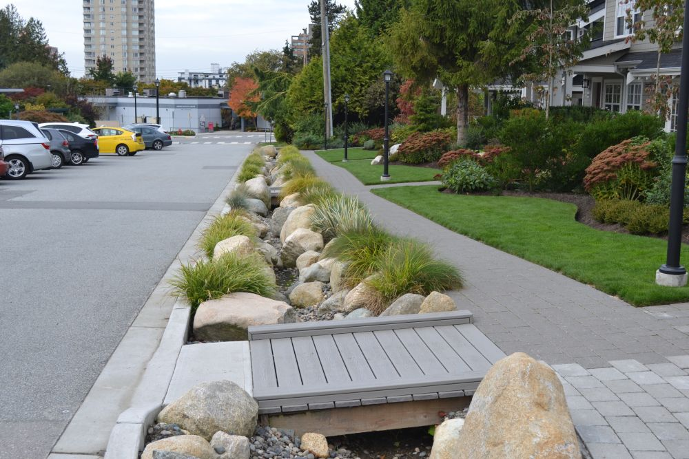 Boulevard rain garden integrated with site landscaping on Esquimalt Ave