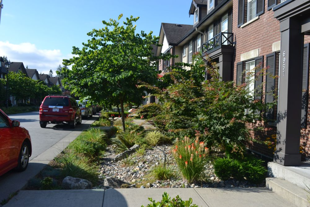 Visit the Township of Langley's Rain Garden webpage, http://www.tol.ca/Land-Use-and-Development/Rain-Gardens. Download the Rain Garden Brochure